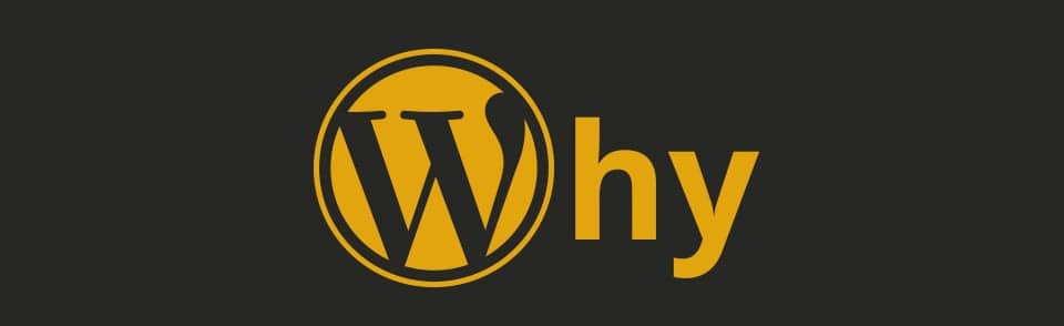 Why should you choose WordPress for your website?